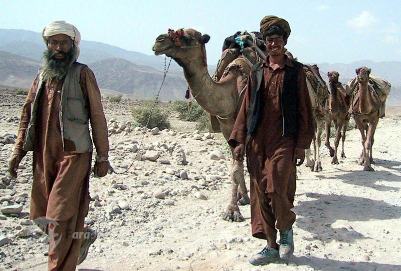 دو مرد افغان و چند شتر در حال عبور از جاده های خاکی اطراف کابل. 5 سپتامبر 2001